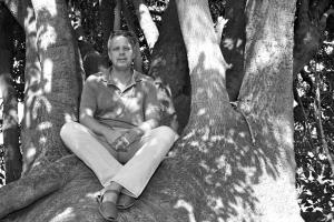 Gustavo, en el viejo ombú del barranco