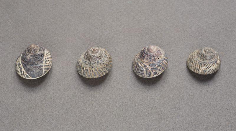 Abierto el plazo de inscripción para las dos visitas guiadas al Museo y Parque Arqueológico Cueva Pintada