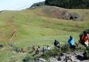 Este sábado, V Carrera de montaña Entre Cortijos